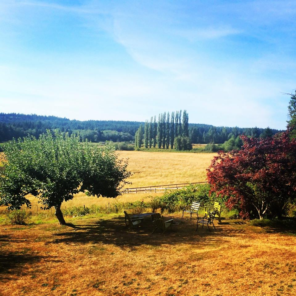 The view from our amazing VRBO on Whidbey
