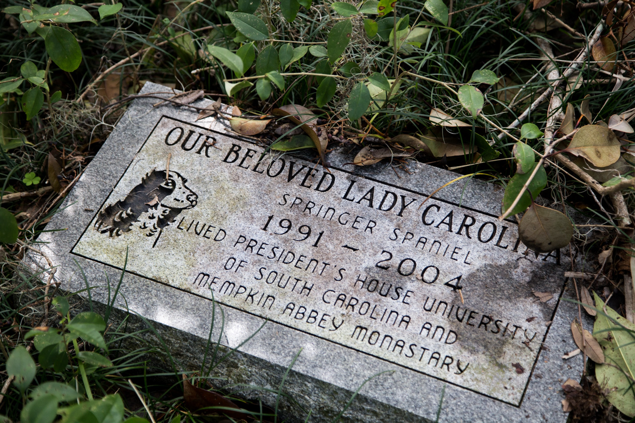 Ode to Lady Carolina (by someone who couldn't spell very well...)